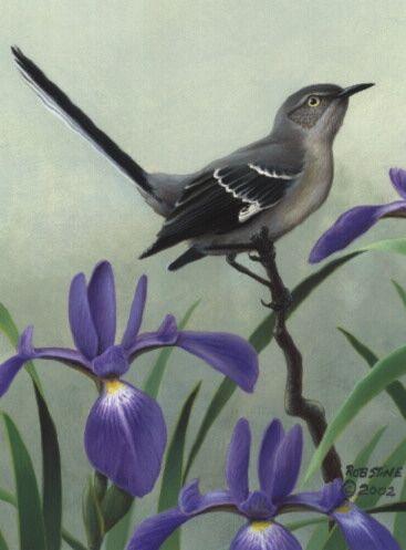 Tennessee State Bird Flower