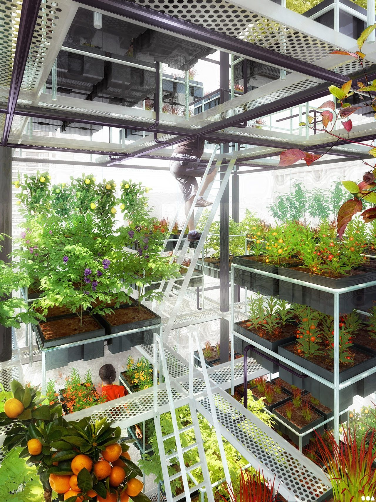 urban agriculture Introduction opportunities for urban farmers – and abd in urban agriculture   the number of urban dwellers who engage in some form of agriculture can be  much higher  a subscription is required to access the full text content of this  book.