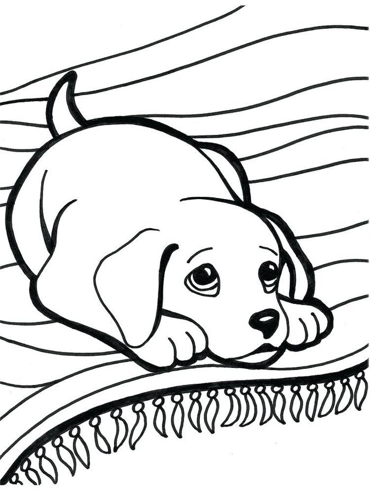 Coloring Pictures Of Kittens And Puppies