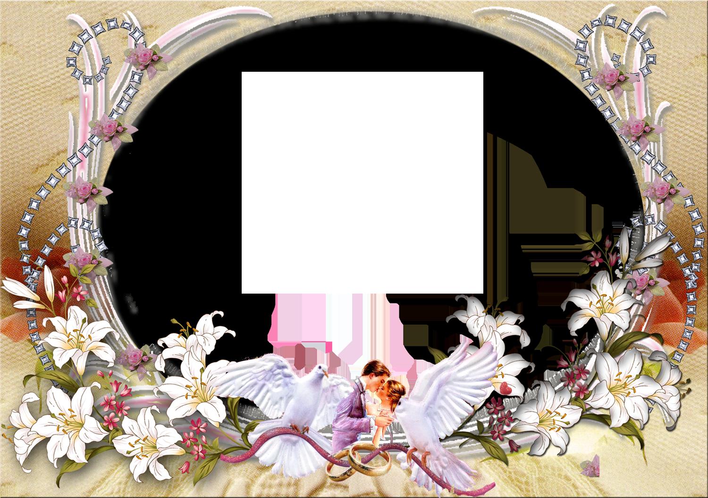 Free Wedding Backgrounds Frames Background New