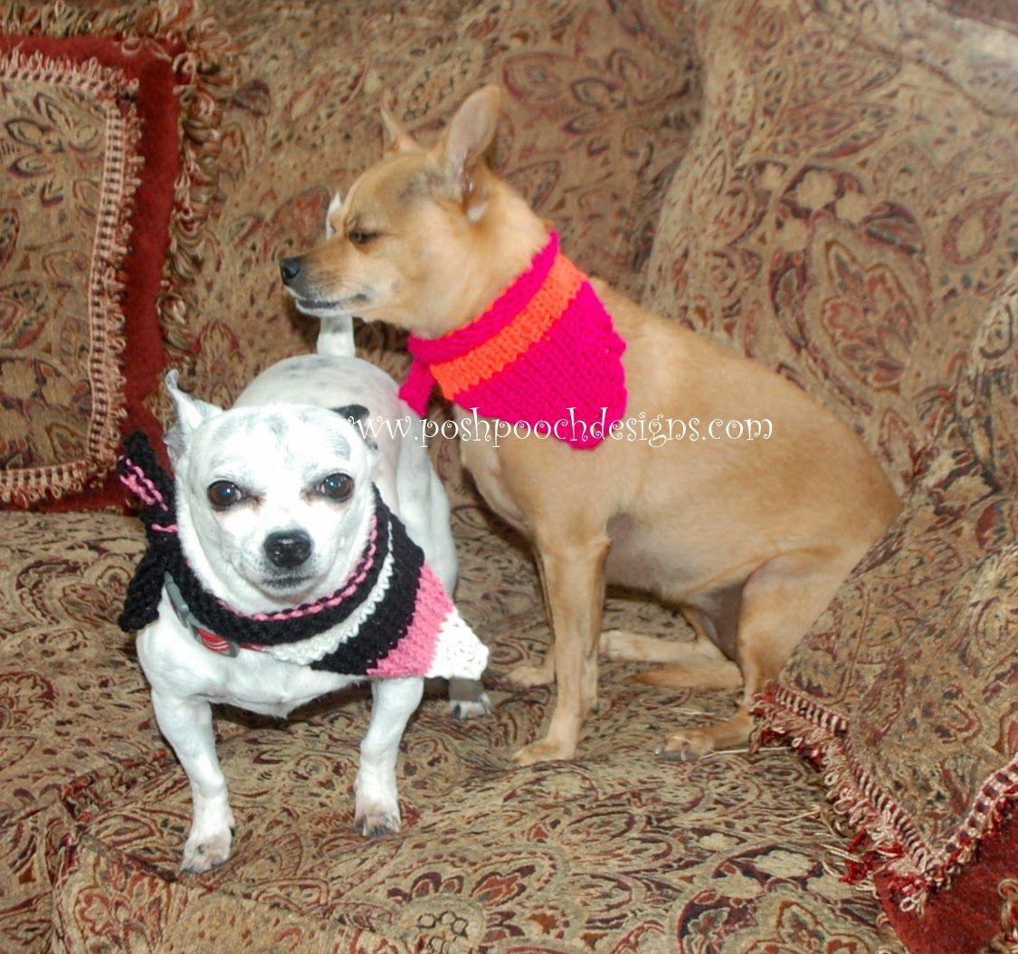 Posh pooch designs dog clothes striped dog bandanna free knitting posh pooch designs dog clothes striped dog bandanna free knitting pattern posh pooch designs bankloansurffo Gallery
