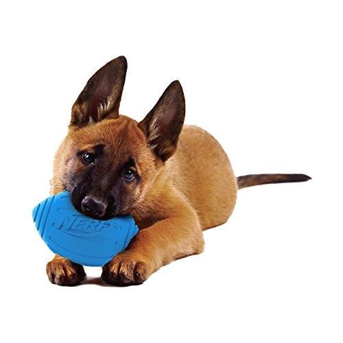 Nerf Dog Ridged Squeaker Football       >>> Great deal    http://amzn.to/2cRQ8p3