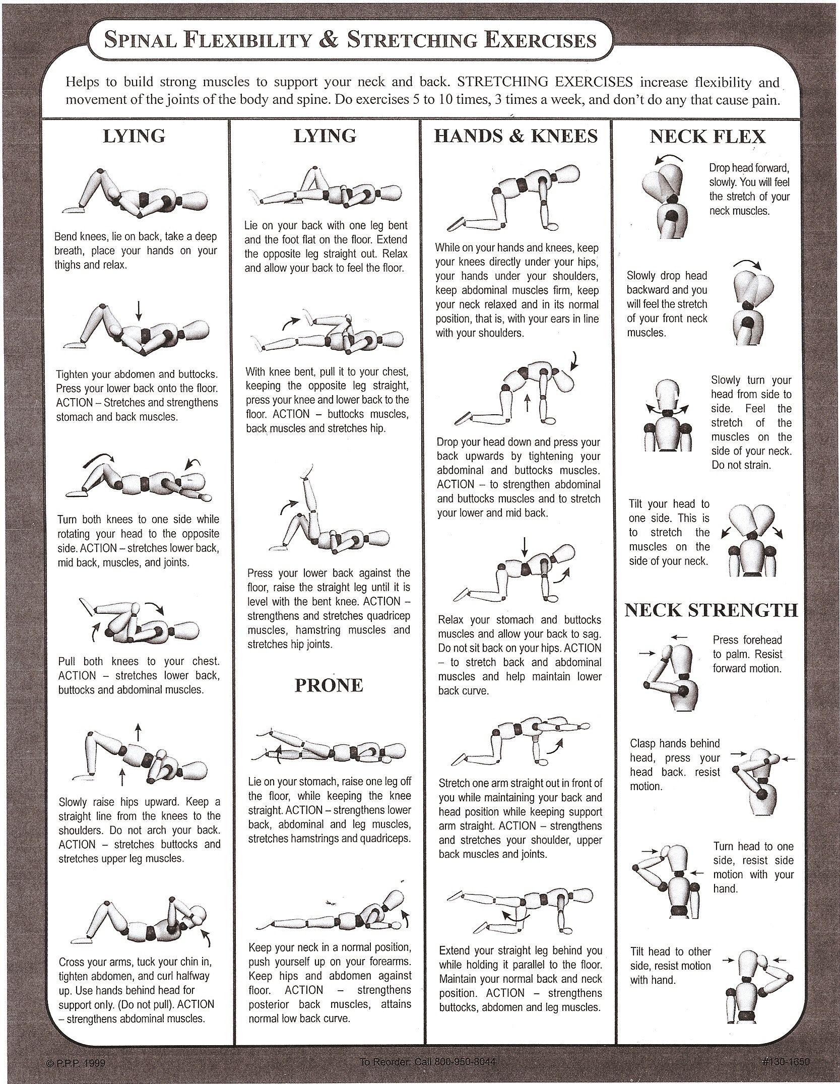 stretches regarding flexibility technique essay