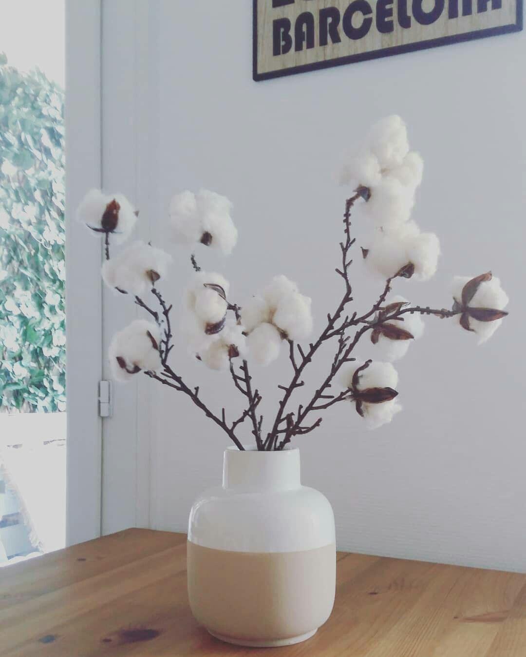 Branche Fleur De Coton fleur de coton #cottonflower. décoration intérieure | fleur