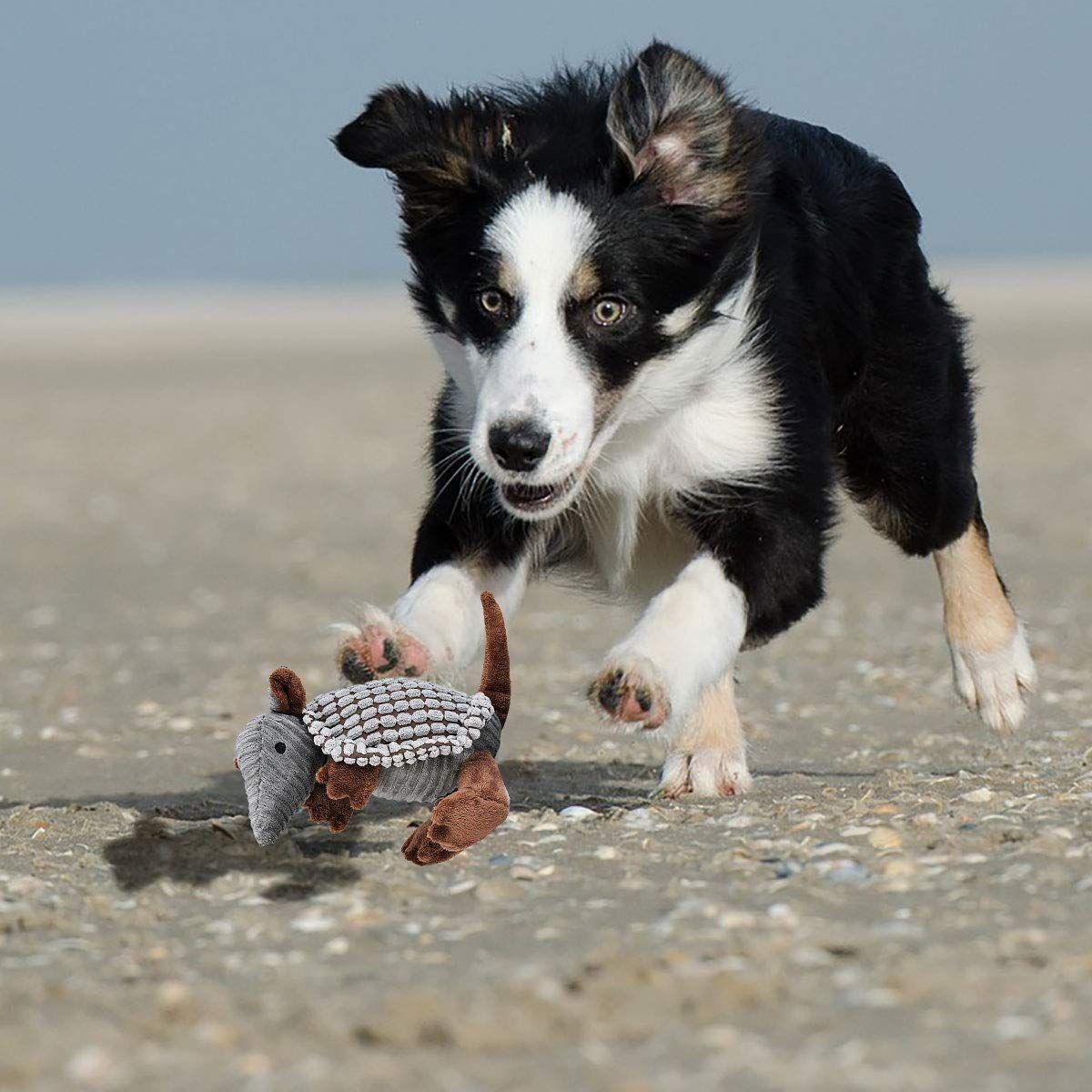 Legendog Dog Toys Puppy Toysinteractive Stuffed Dog Chew Toys Dog Squeaky Plush Toys Armadillo Puppy Chew Toys Puppies T Dog Chew Toys Puppy Chew Toys Dog Toys