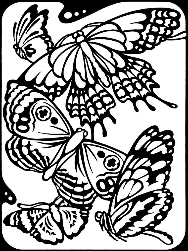 Butterfly coloring page Kids