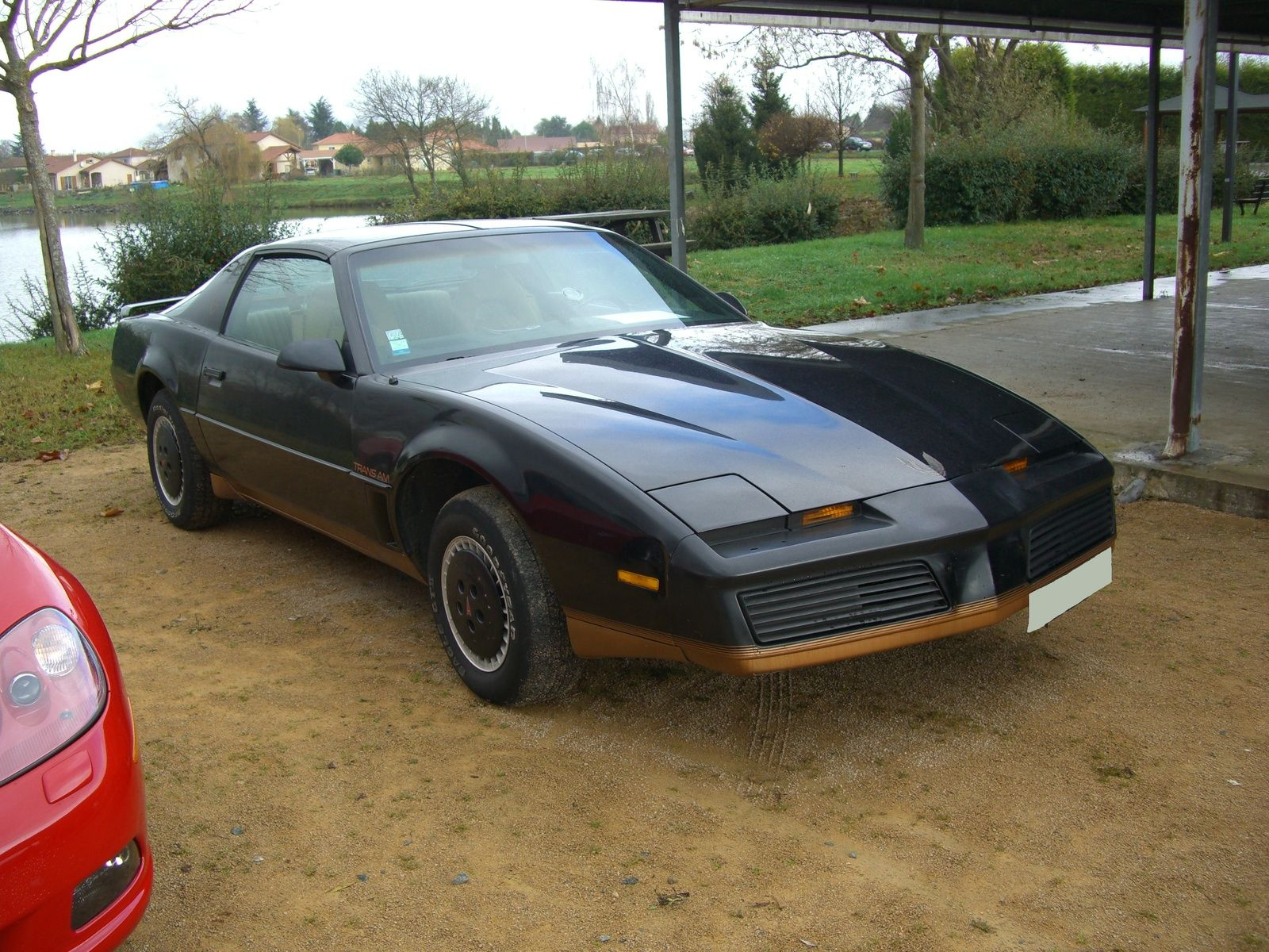 trans ams picture of 1982 pontiac trans am exterior. Black Bedroom Furniture Sets. Home Design Ideas