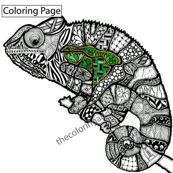 Zentangle Lizard Coloring Page Animal Colouring Digital Chameleon Pdf Intricate Design Sketch Grown Up