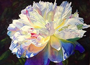Queen of May by Cathy Hillegas Watercolor ~ 22 x 30