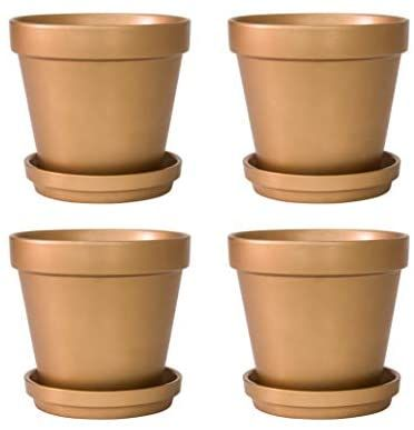 Amazon Com Pack Of 4 Terracotta Pots With Saucers 6 Inches Terra Cotta Clay Pots With Tray For Plants Succu In 2020 Terra Cotta Clay Pots Terracotta Pots Clay Pots