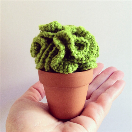 Crochet Lettuce Cactus | Ditto Crafts | madeit.com.au