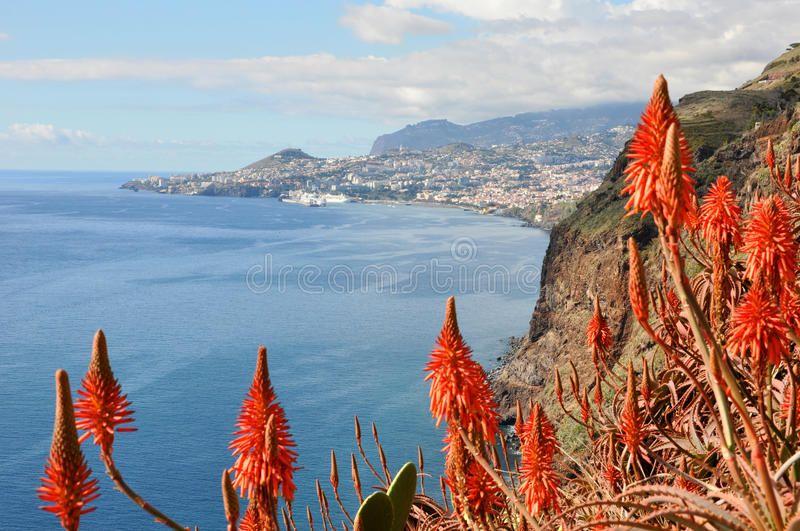 Madeira coast Funchal Overview of capital city funchal on madeira island port
