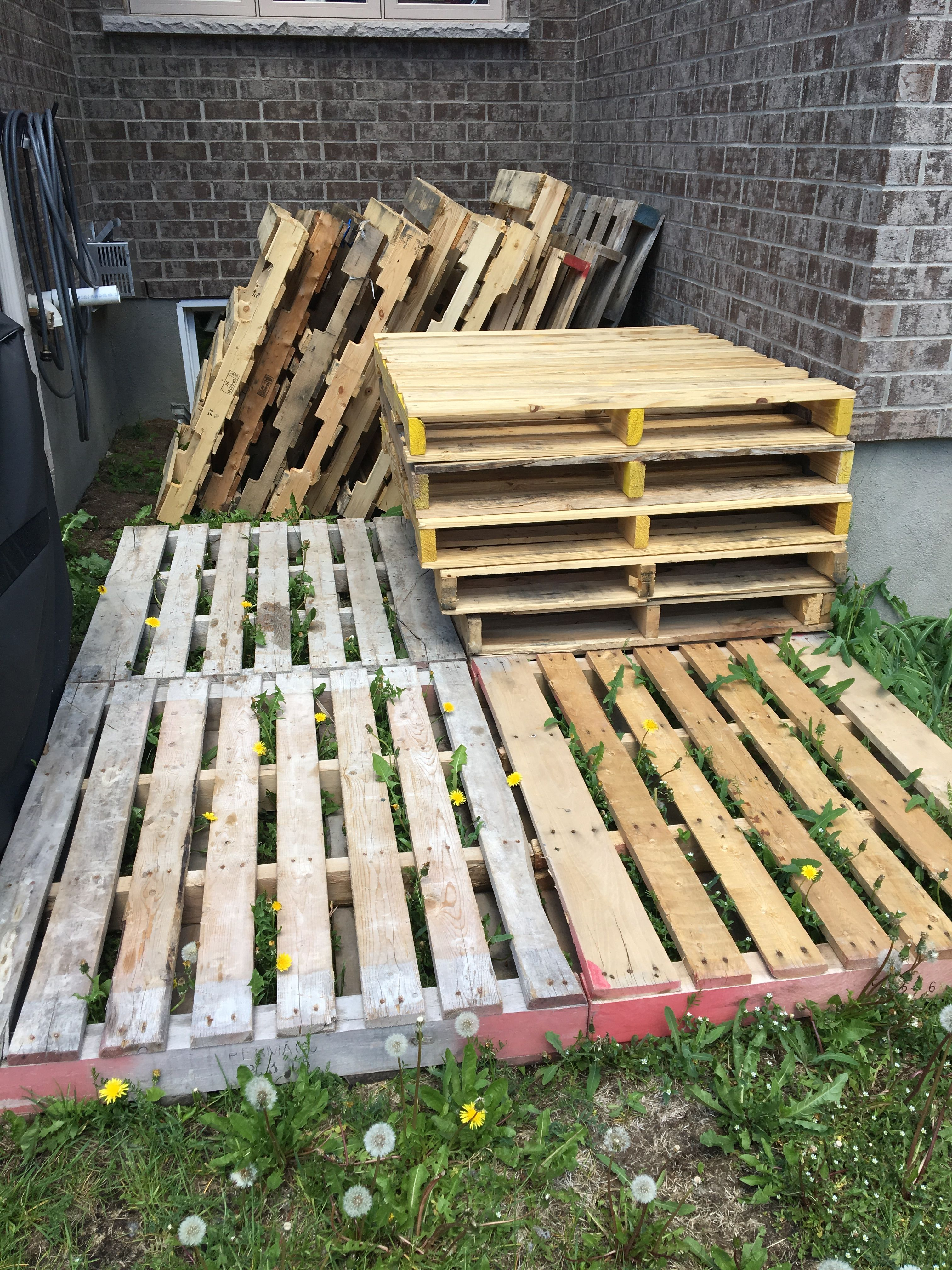 Here is the collection of pallets we gathered for the ...