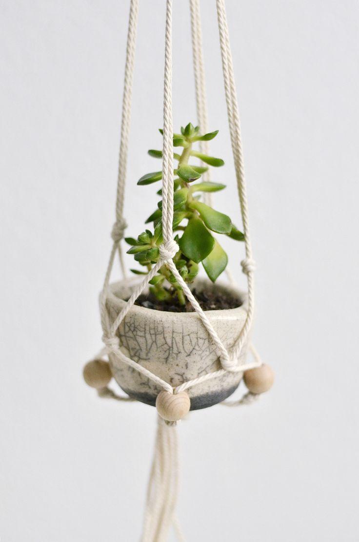 Nachmachtipp makramee h ngeampel diy pflanzen deko pinterest ampel makramee - Zimmerpflanzen groay ...