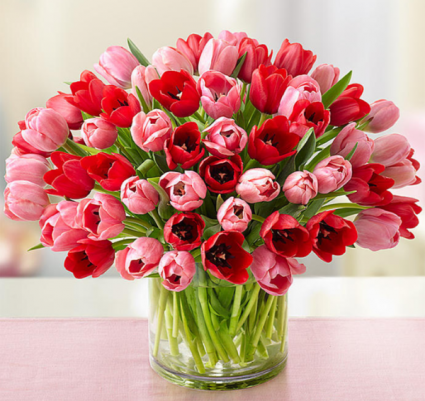 Sweetest Love Tulips Fresh Flowers Online Valentines Flowers Flower Delivery