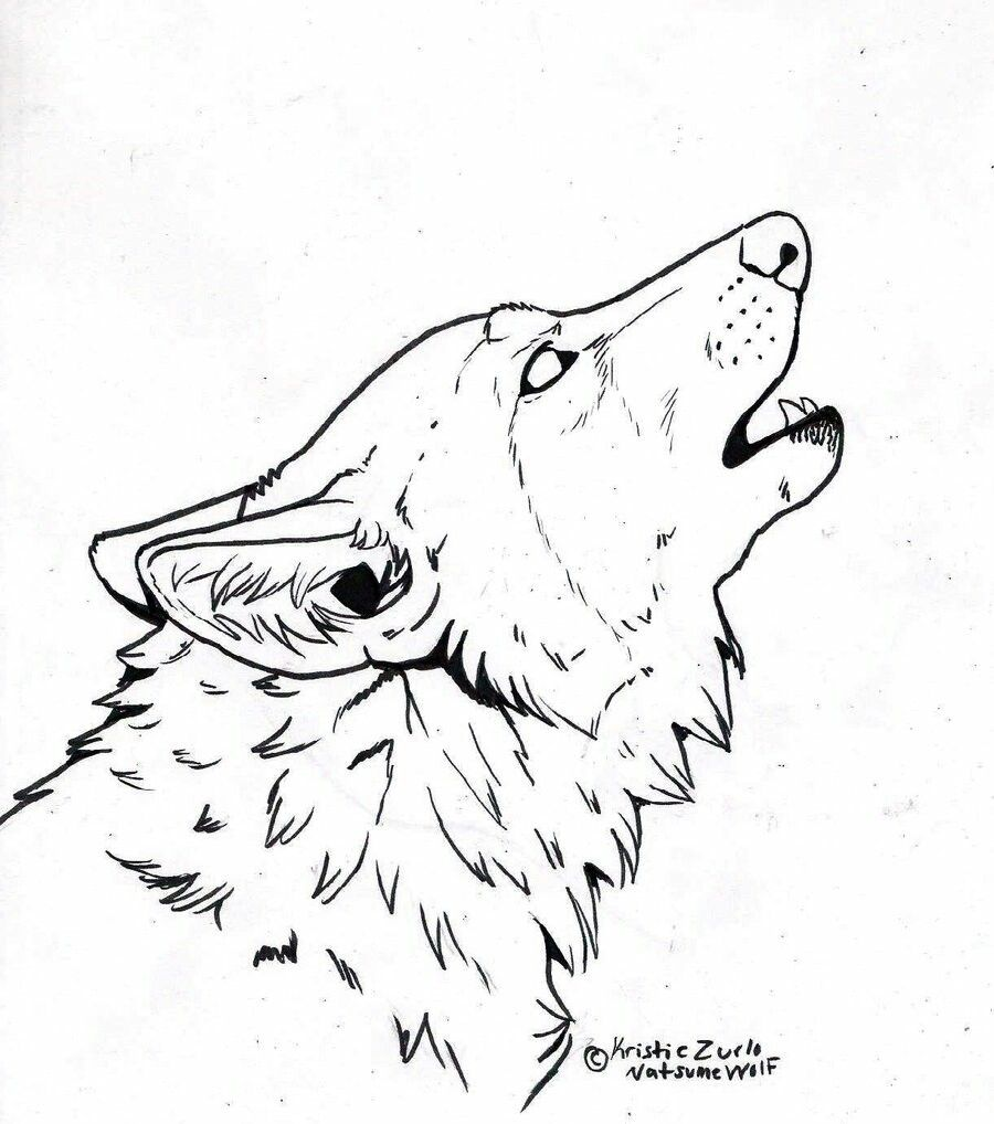 Pin by Jan Sigmund on Wolves Line art, Wolf howling