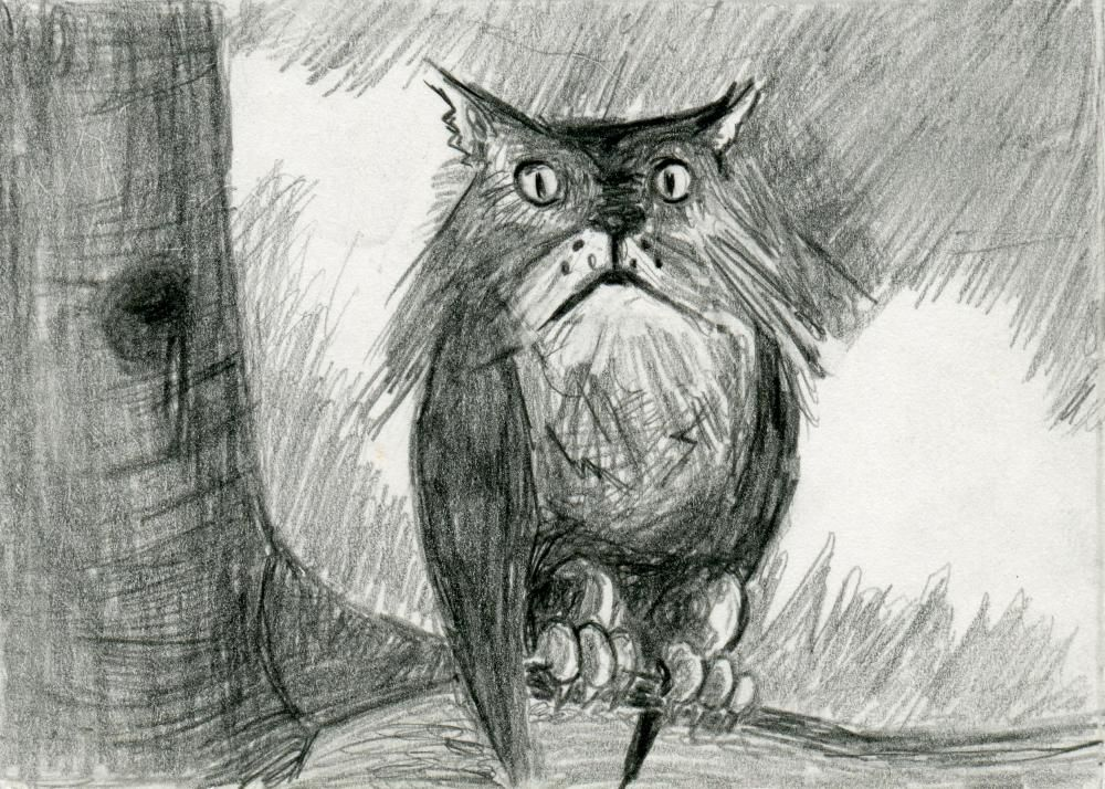 Owl Cat Pencil Drawing Black And White Print Hybrid Animals Series