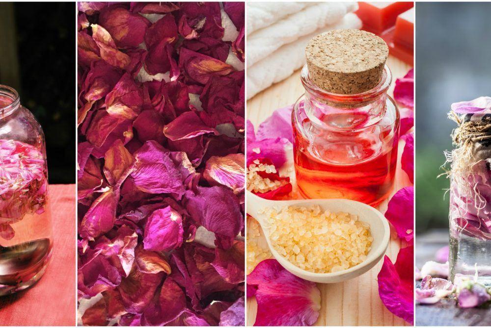 how to preserve a rose petal