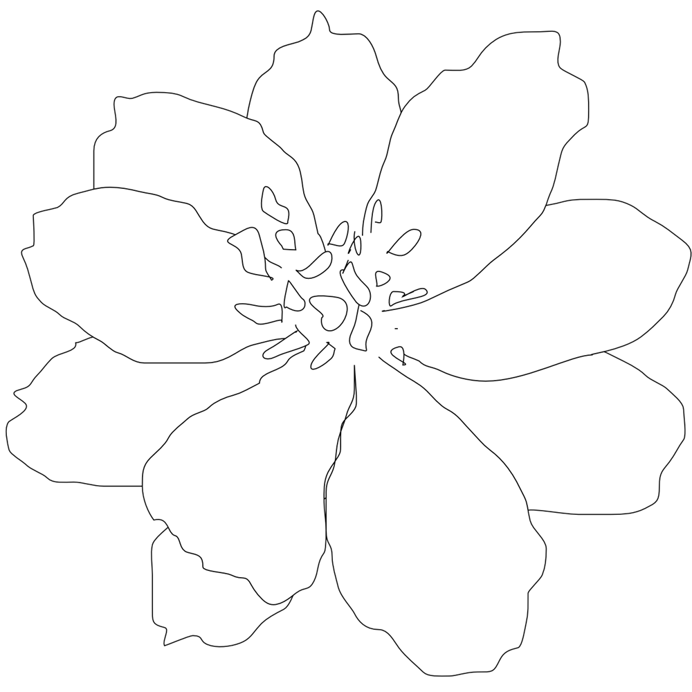 White Flowers Clip Art Black White Line Art Tattoo Black And White