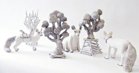 Katharine Morling Discovery Foxes