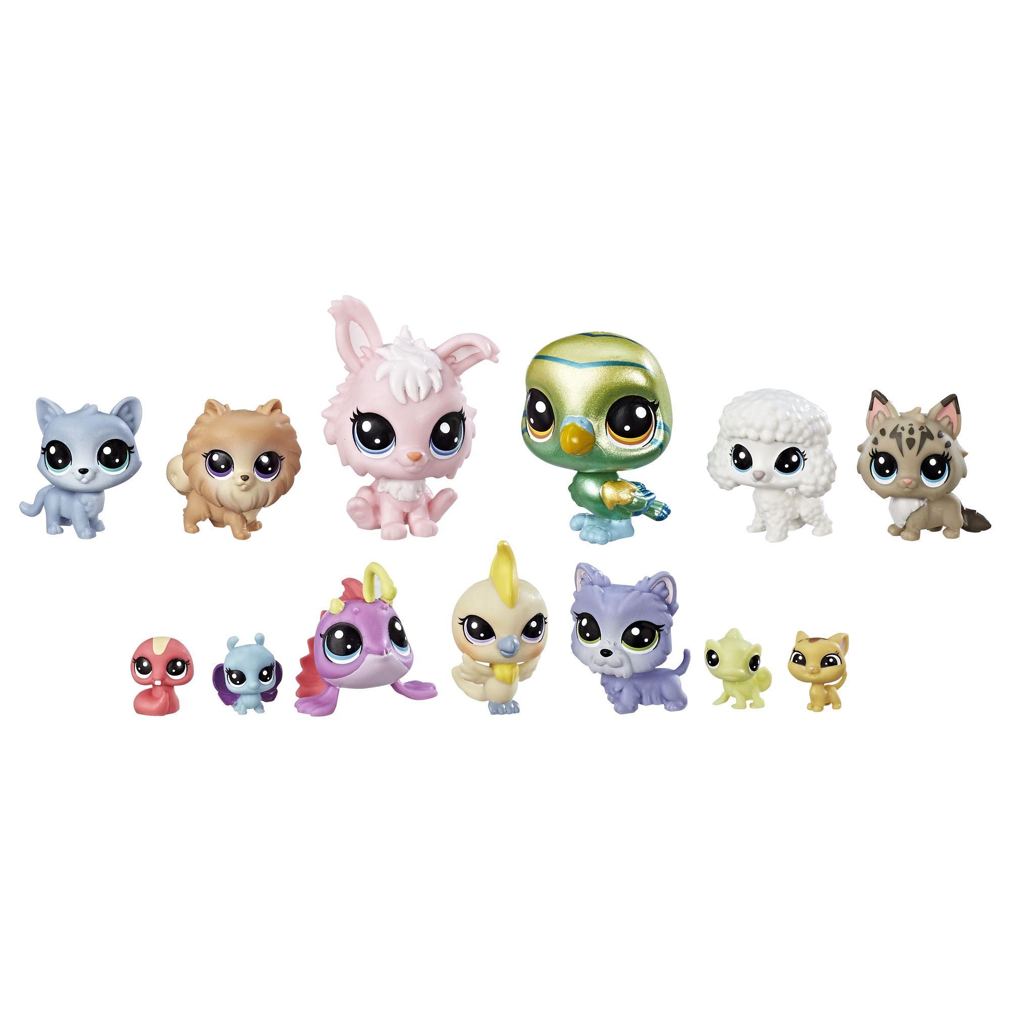 Littlest Pet Shop The Diva Squad Lps Littlest Pet Shop Littlest