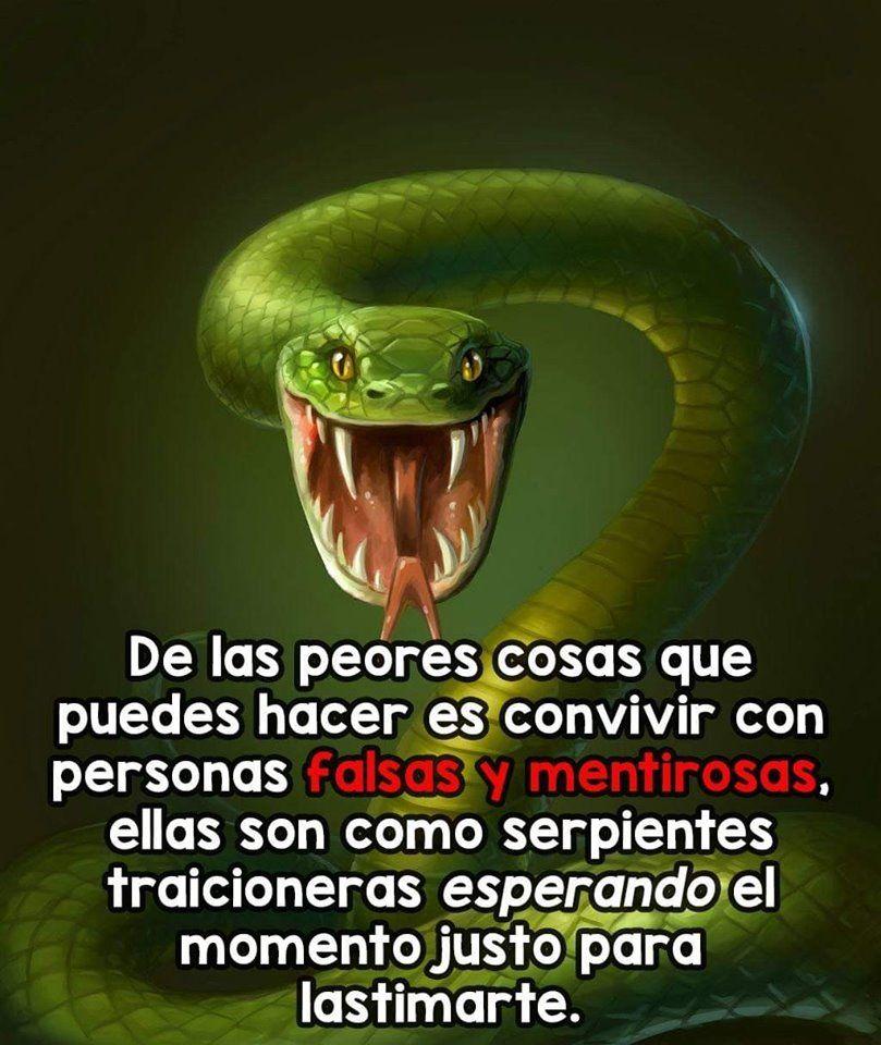 Como Acabar Con Las Viboras Peligrosa Serpiente Verde Con Imagenes Serpientes Culebras