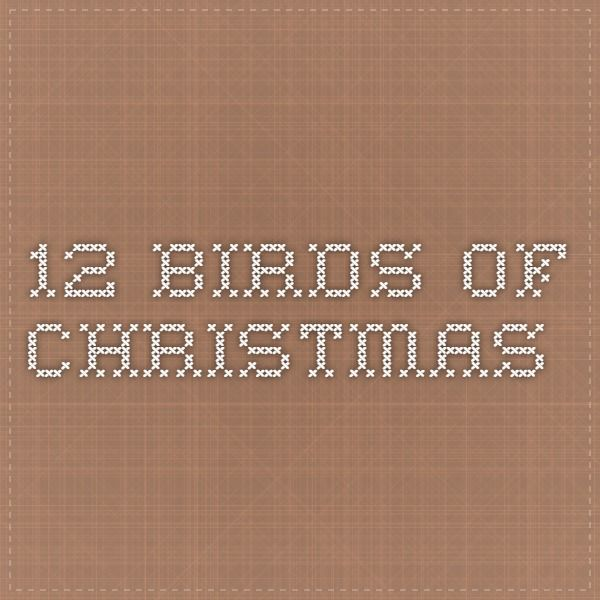 12 Birds of Christmas