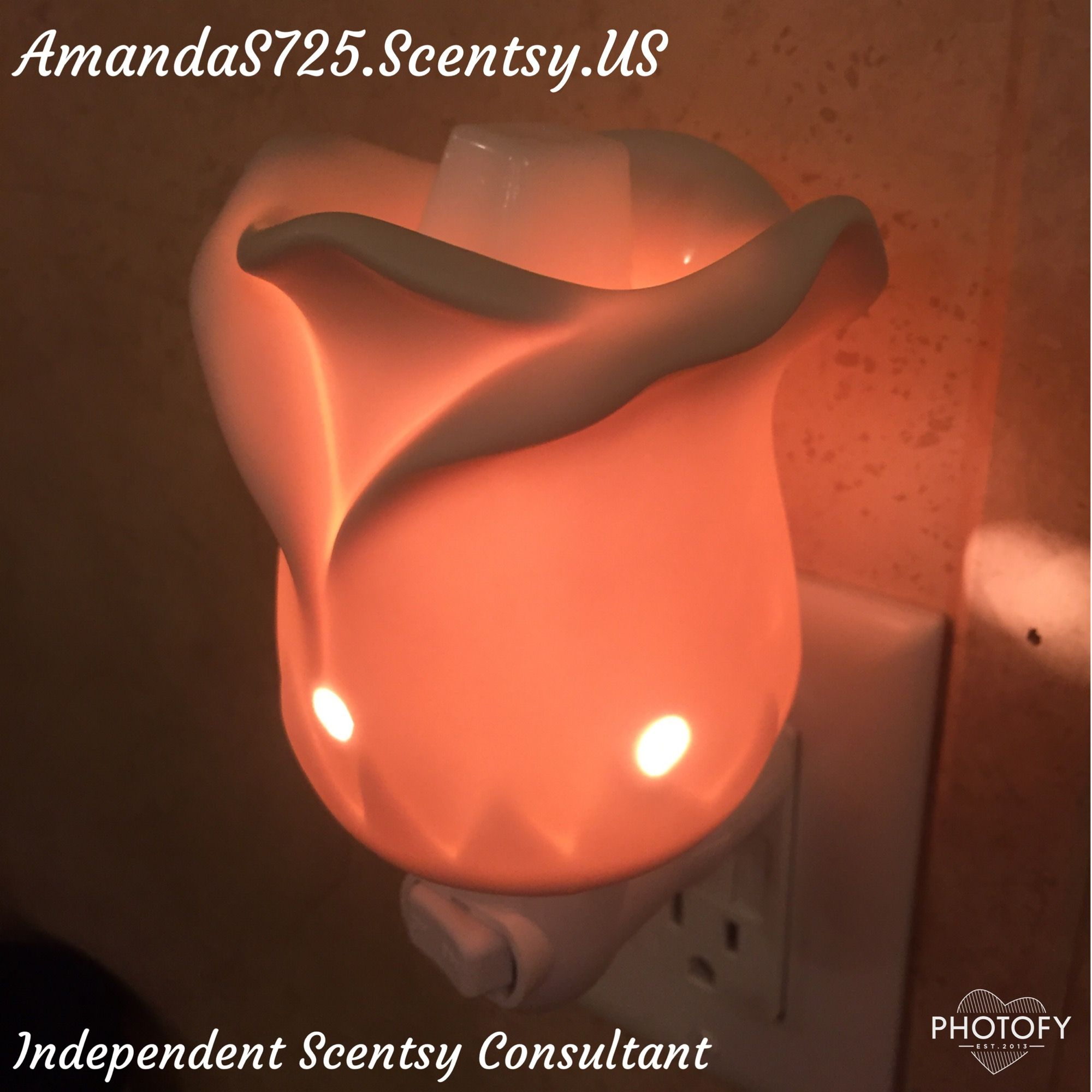 I Absolutely Adore My Tea Rose Mini Warmer It Looks Perfect In My Bathroom And It Makes A Great Night Light Als Colored Light Bulbs Tea Roses Scentsy Wax Bars