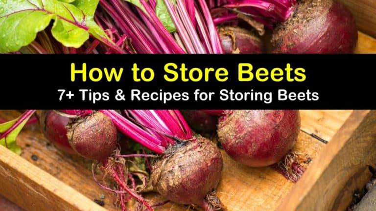 7 Tips Recipes For Storing Beets How To Store Beets Fresh Beets Beets