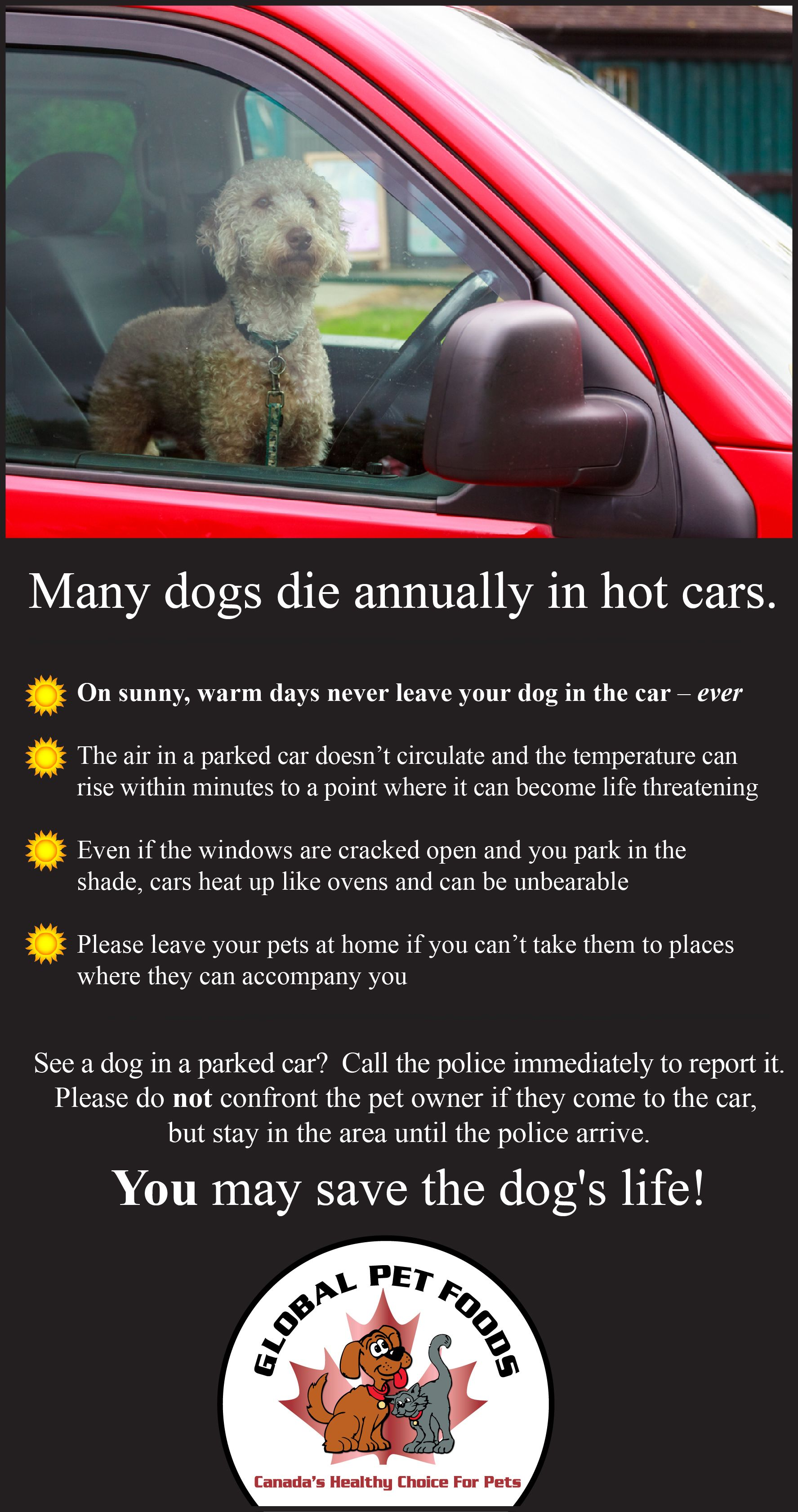 Now That We Re Full Swing Into The Summer Weather We Want To Remind Everyone That Pets Should Never Ever Be Left In The With Images Sick Pets Pet Food Store Food
