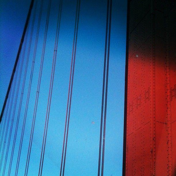 Golden Gate  zelmarose