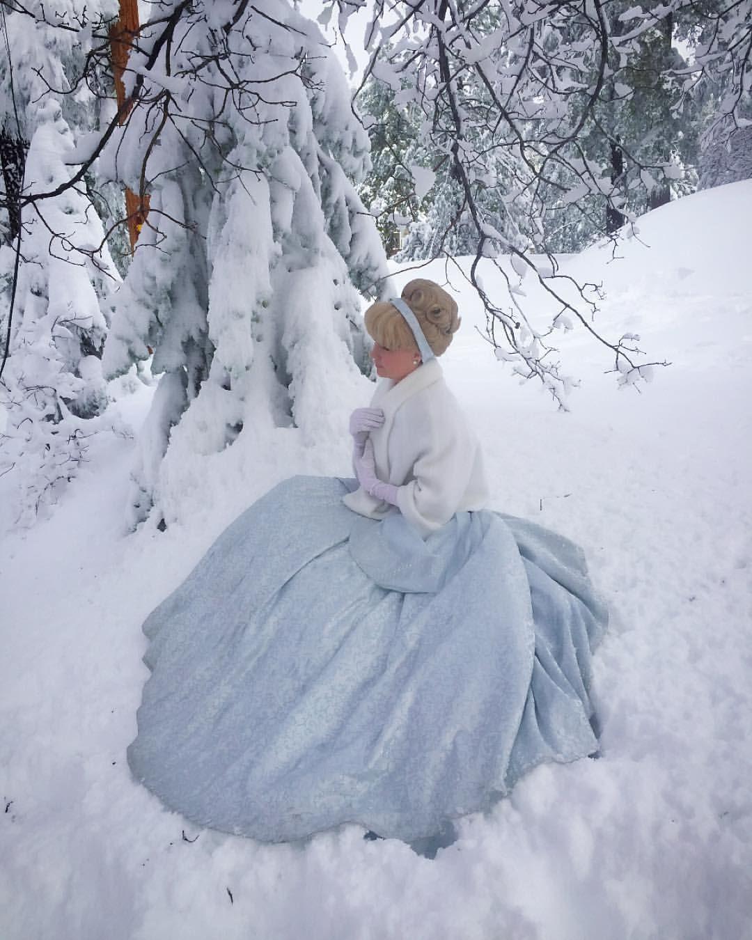 SnowyS Wonderland