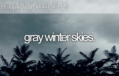 things i love about winter grey winter skies winter sky