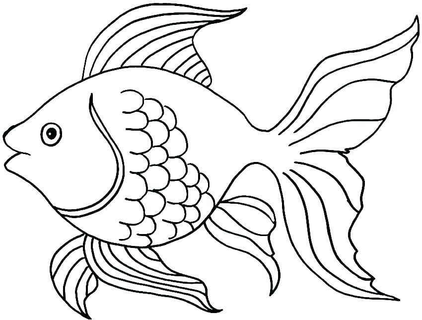 Cute Fish Coloring Pages For Kids From The Finding Nemo Movie Free Coloring Sheets Fish Coloring Page Fish Drawings Animal Coloring Pages
