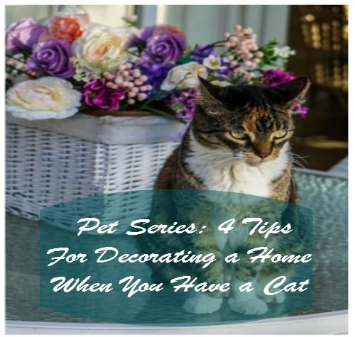 Pet Series: 4 Tips For Decorating a Home When You Have a Cat  http://ohmyheartsiegirl.com/pet-series-4-tips-decorating-home-cat/ #cats
