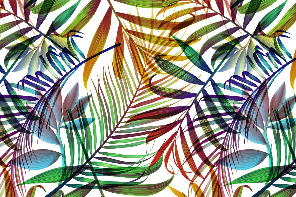 Tropical colorful palm jungle leaves by mystel on Creative