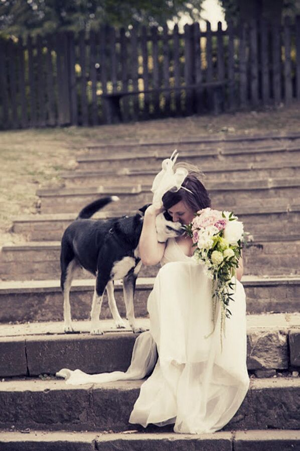 Get a cuddle for wedding pictures.