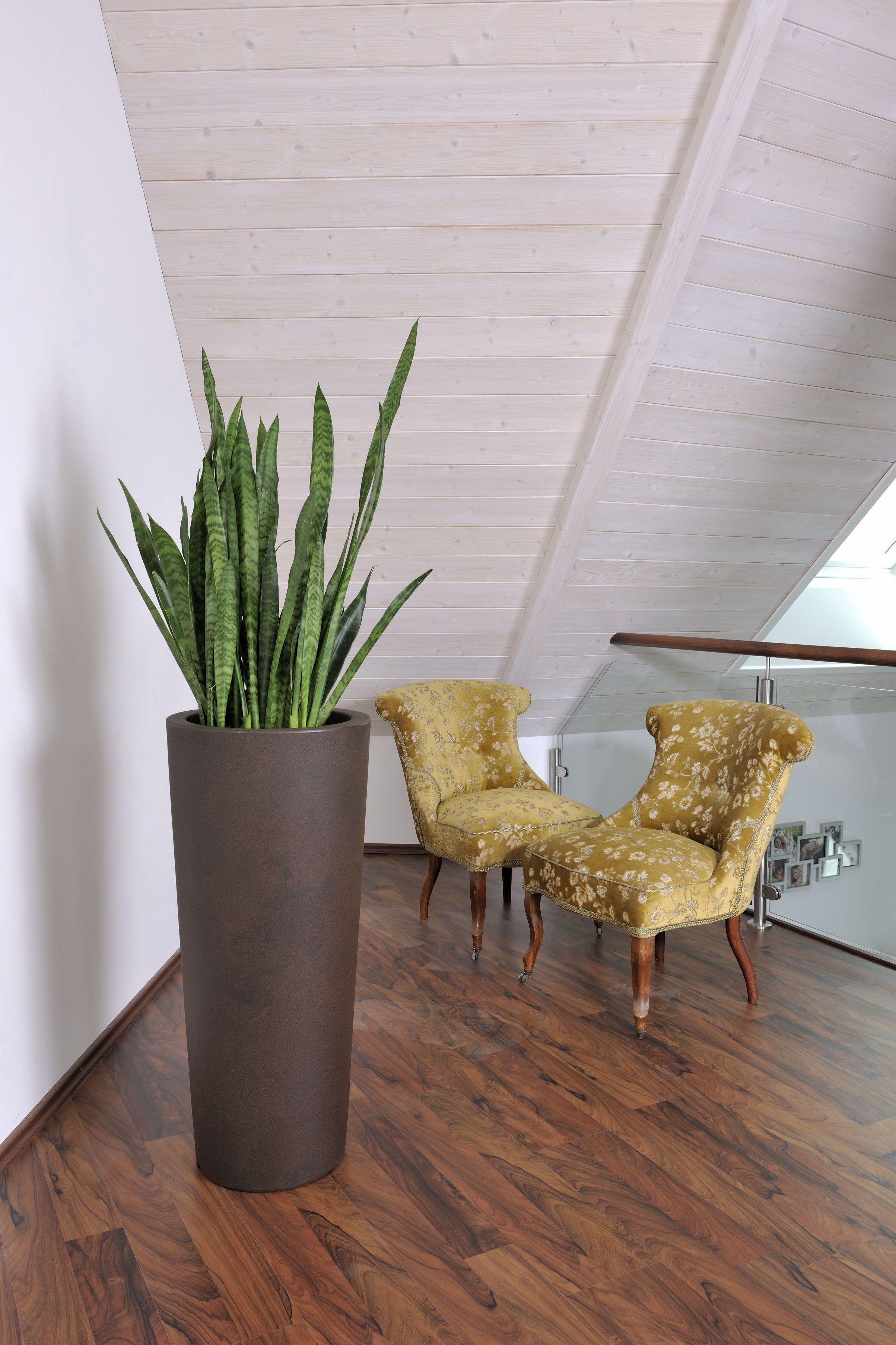 Der CONO 110 aus Kunststoff in Bronze matt dient hier zur Dekoration ...