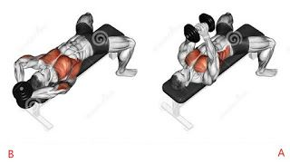 The 8 Best Full Gym Chest Workout