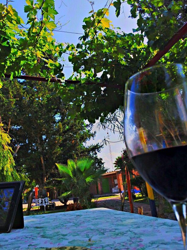 Tarde de vino