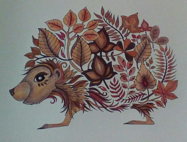 Pre Pimped Hedgehog From Johanna Basford Enchanted Forest