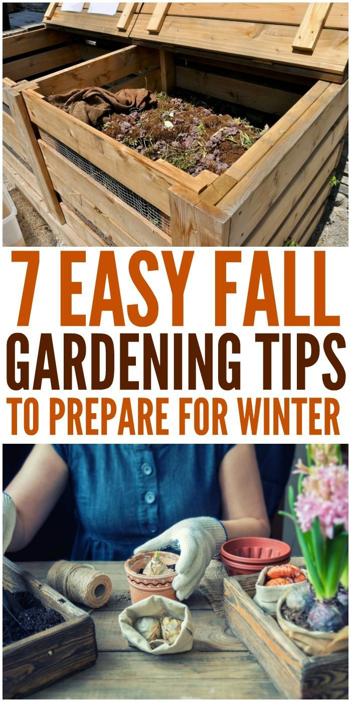 Fall Gardening Tips - How To Prepare for Winter