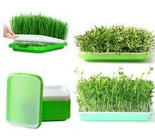 Гидропоника для прорастания семян фильм с полем конопли