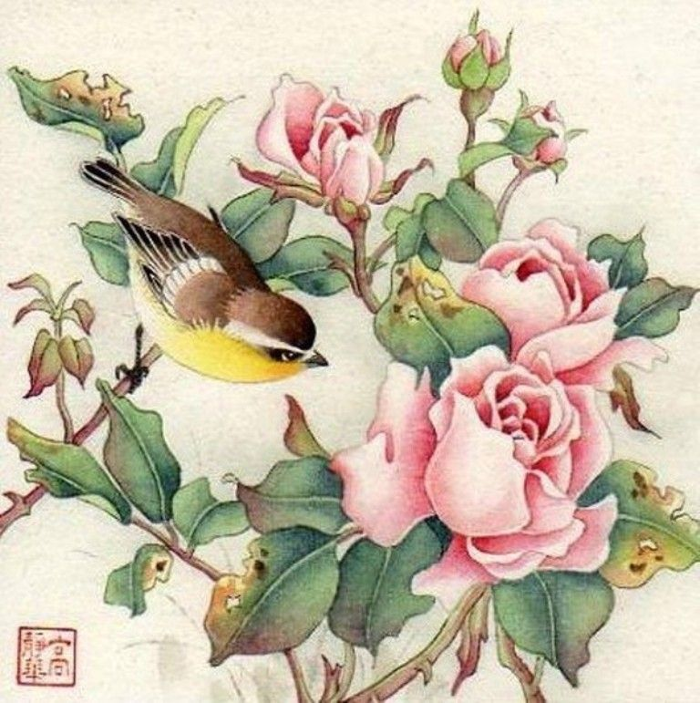 акварель птицы цветы картинки для того