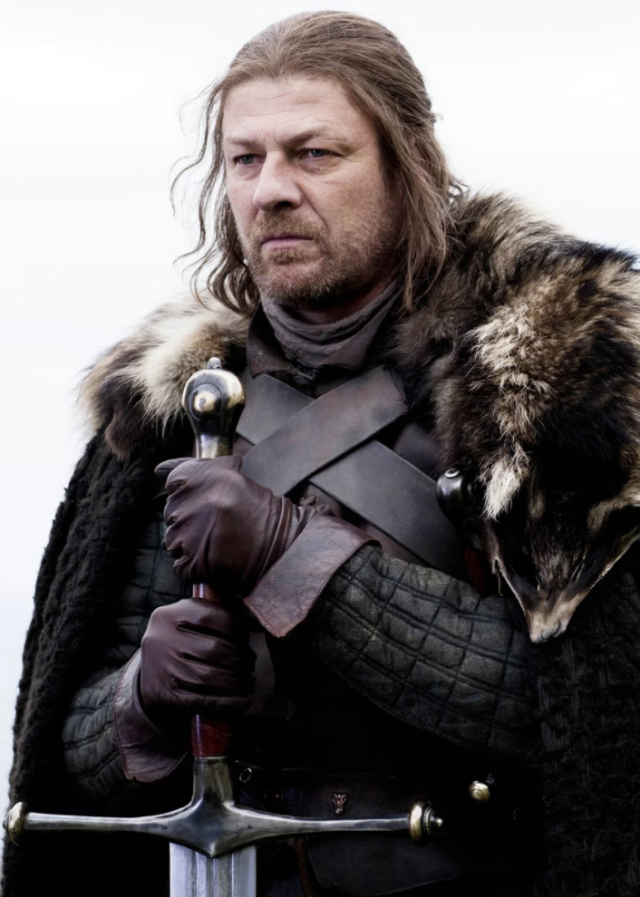 gotfunny (With images) Game of throne actors, Ned stark