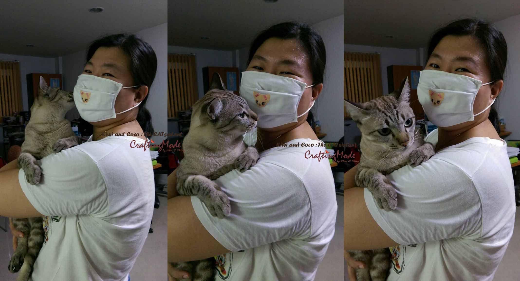 Hug cat day : )  Kiwi