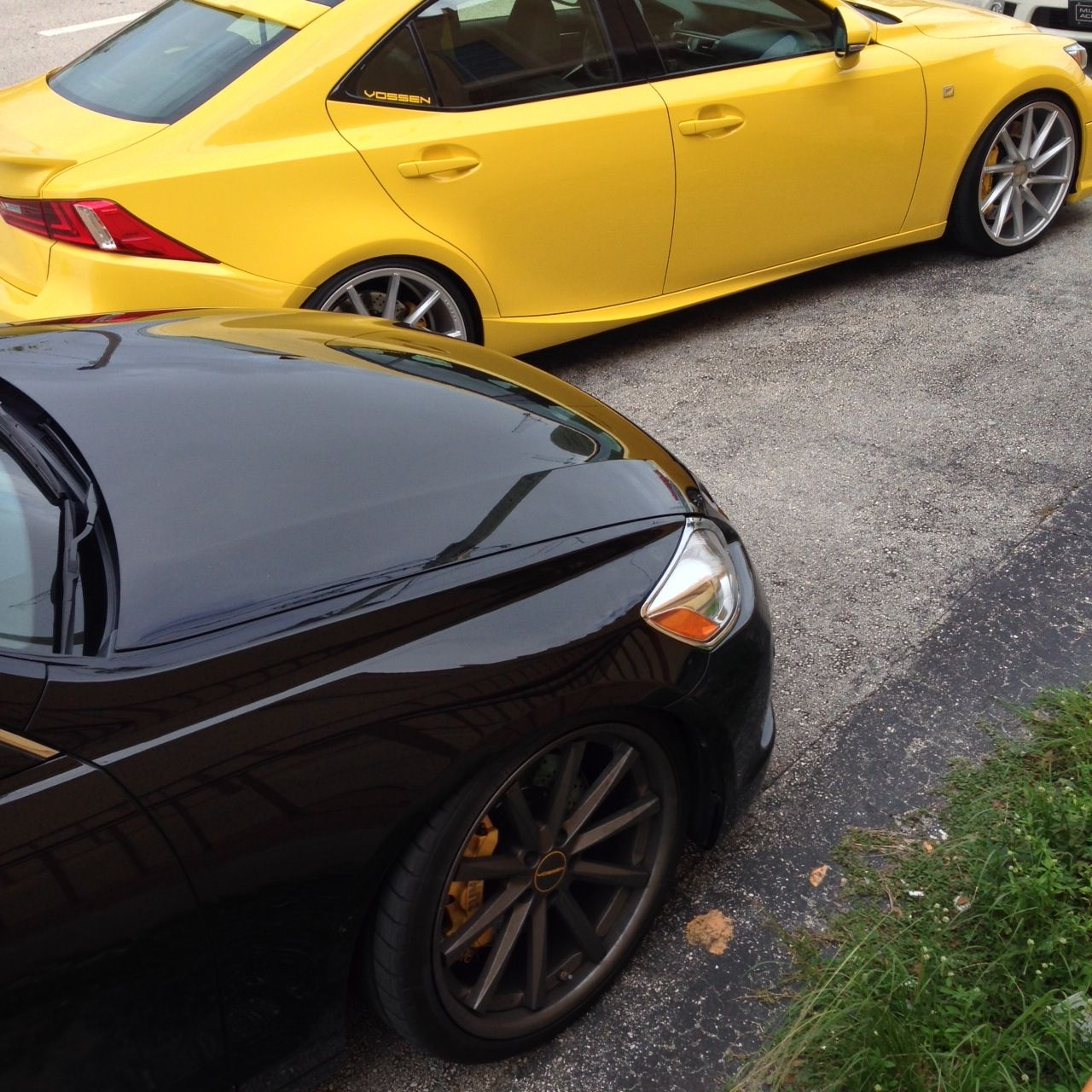Black & Yellow! Lexus 2014 IS 350 F Sport 2007 GS 450h
