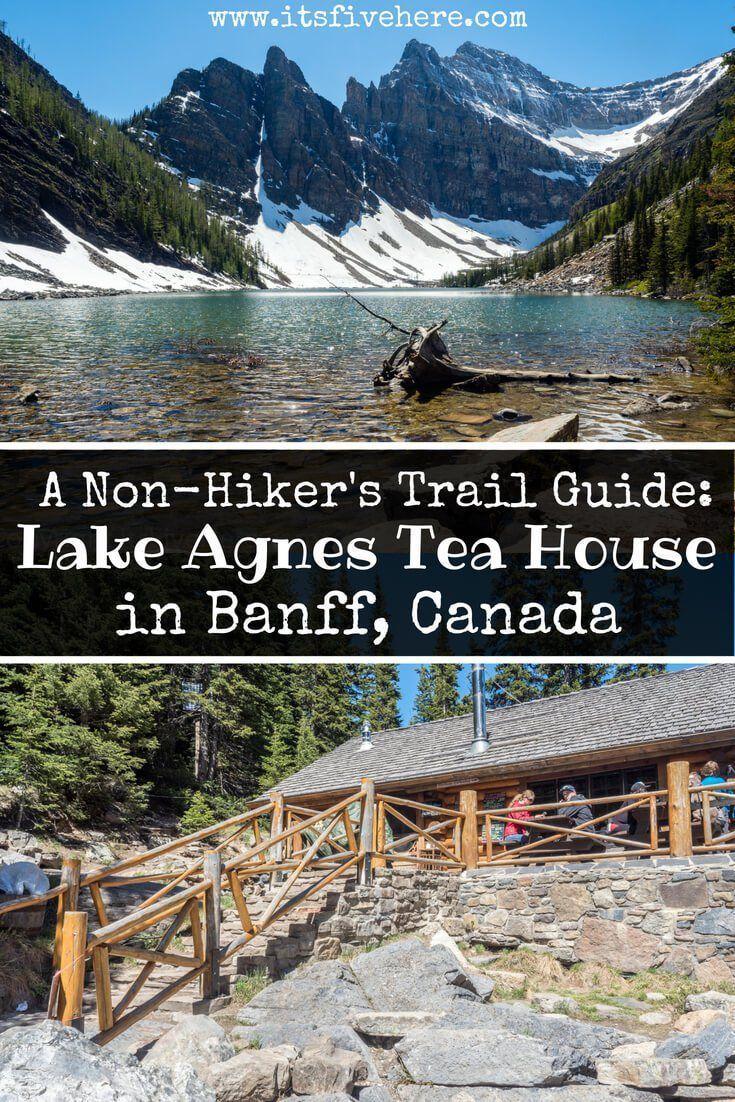 lake agnes teahouse hike map Banff National Park The Lake Agnes Tea House Trail Guide For Non lake agnes teahouse hike map
