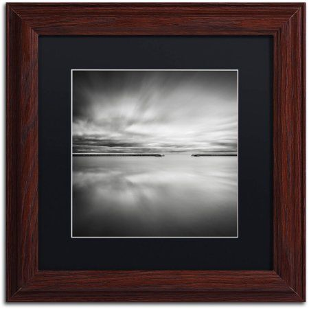 trademark fine art double vision canvas art by dave macvicar black matte wood frame - Wood Frames For Canvas Paintings