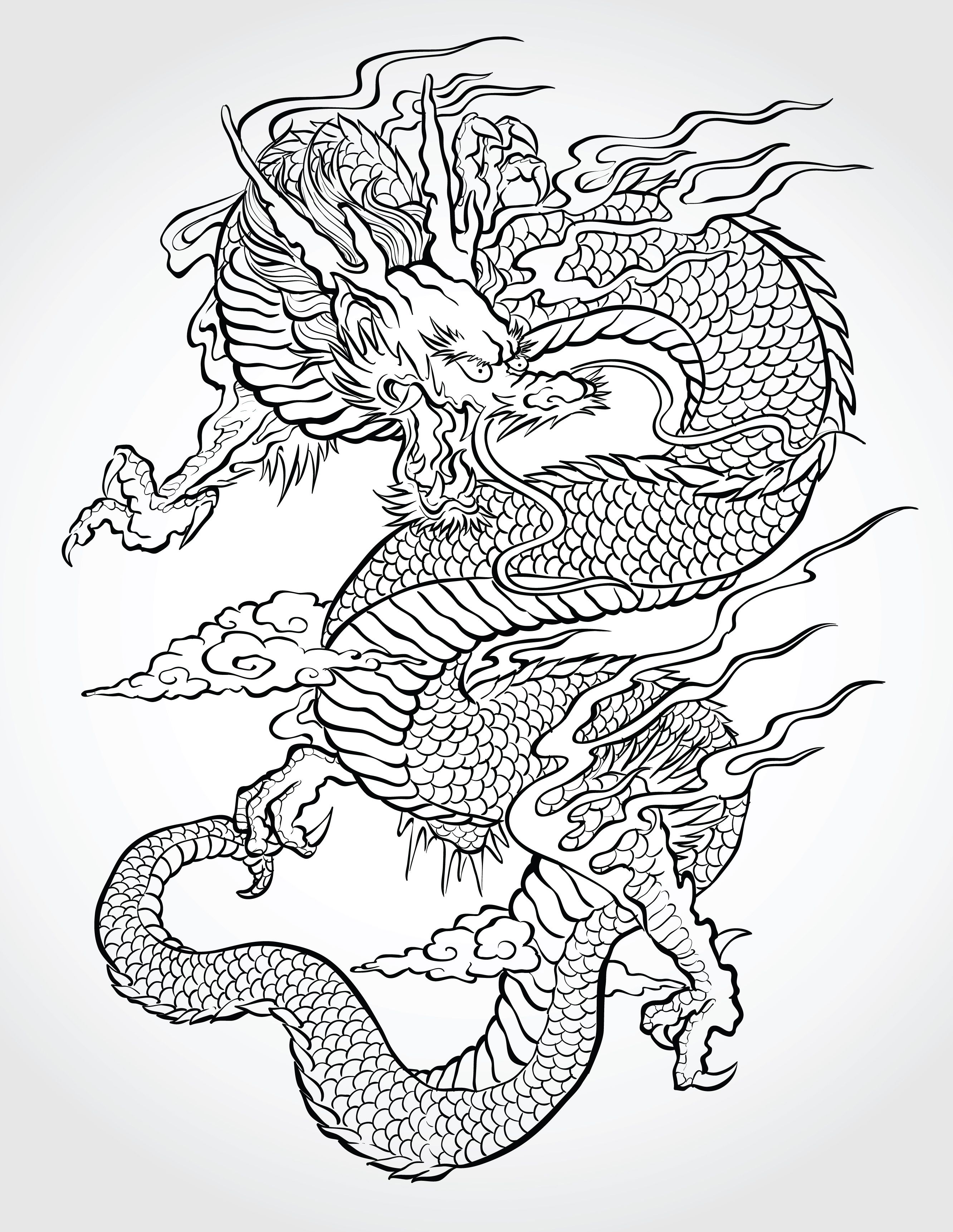 Asian Dragon Asian Dragon Tattoo Japanese Dragon Tattoos Dragon Illustration